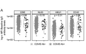 Nature 子刊:针对普通感冒冠状病毒的抗体或可预防 COVID-19感染