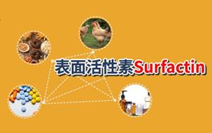 【脂肽类表面活性剂】表面活性素(Surfactin, CAS:24730-31-2)