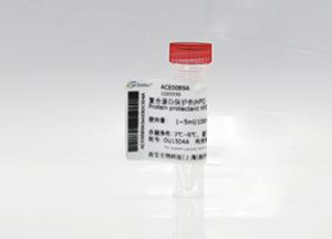 EGFP 标签抗体, 兔多抗